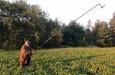 Jihočeský kraj chce ochránit zvířata v období senosečí